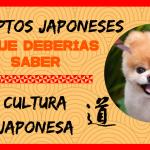 Conceptos japoneses